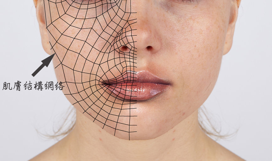 3d_reference___face_loops_by_Athey-01